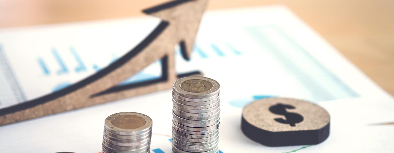 El precio en los contratos del sector público y su posible revisión