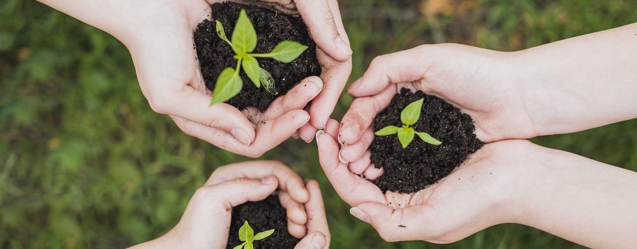 Plan de contratación pública ecológica